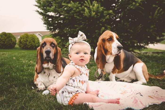 Baby Amie with her hounds Hank & MillieJessica Wright