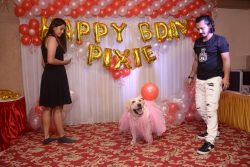 Pixie Celebrates her first Birthday in Grand style – BuzzSharer.com