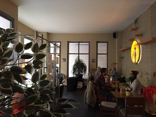 """Katzentempel Cafe"", Munich –"