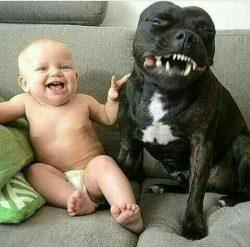 haha. I got more teeth than you
