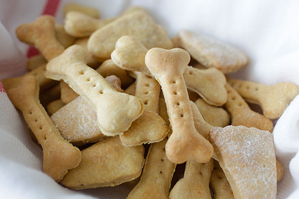 Your Dog Will Go Nuts For These Homemade Peanut Butter Oat Dog Treats!