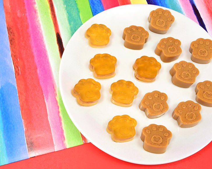 Gummy Doggie Treats