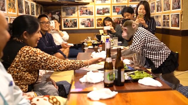 Kayabuki Restaurant -monkey waiter