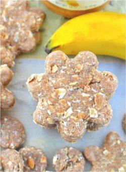 Soft Banana and Almond Pup Treats –