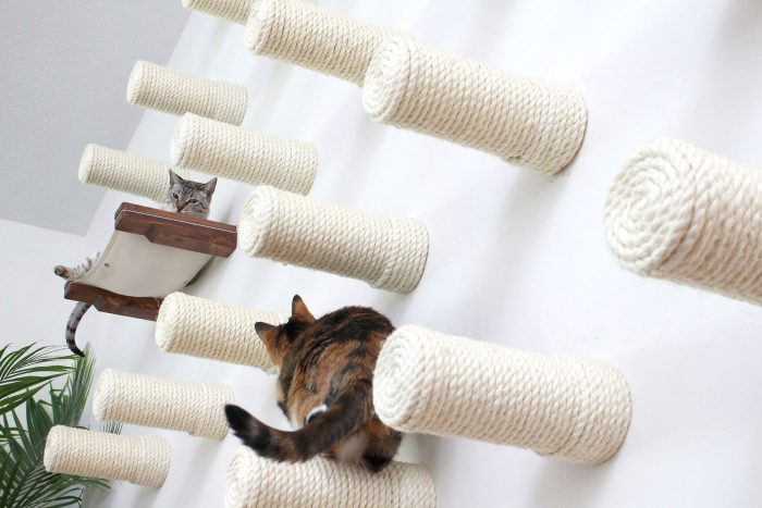 Cat Furniture For Feline Instincts | Catastrophic Creations