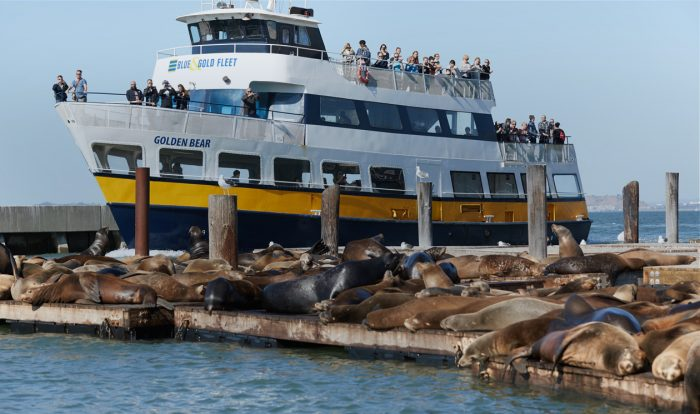 Blue and Gold Fleet Bay Cruises – pet friendly