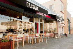 CASSAVA san francisco – pet friendly
