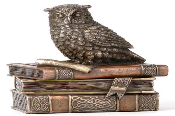A well of knowledge and the wisest bird on the planet – these are the associations that first of ...